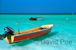 Negril Boats